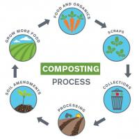 Sun Devil Dining Composting Process